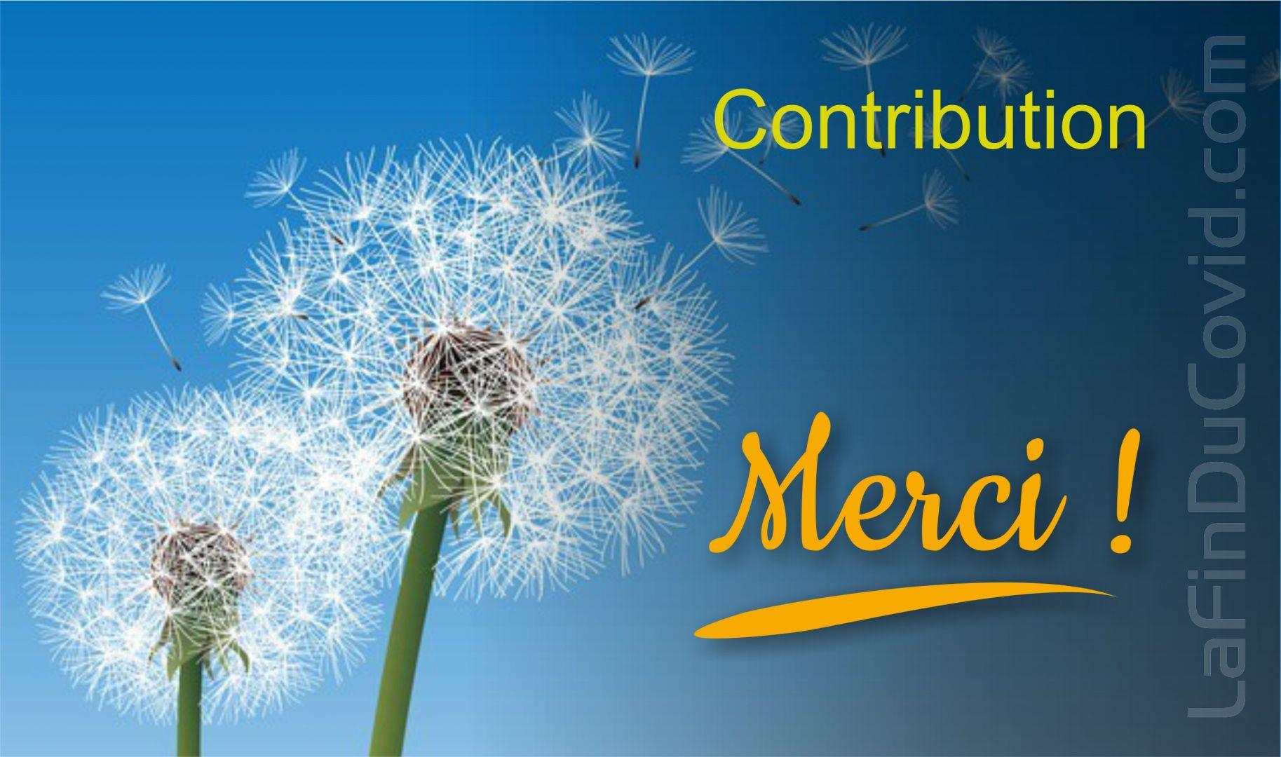 Merci pour votre contribution !