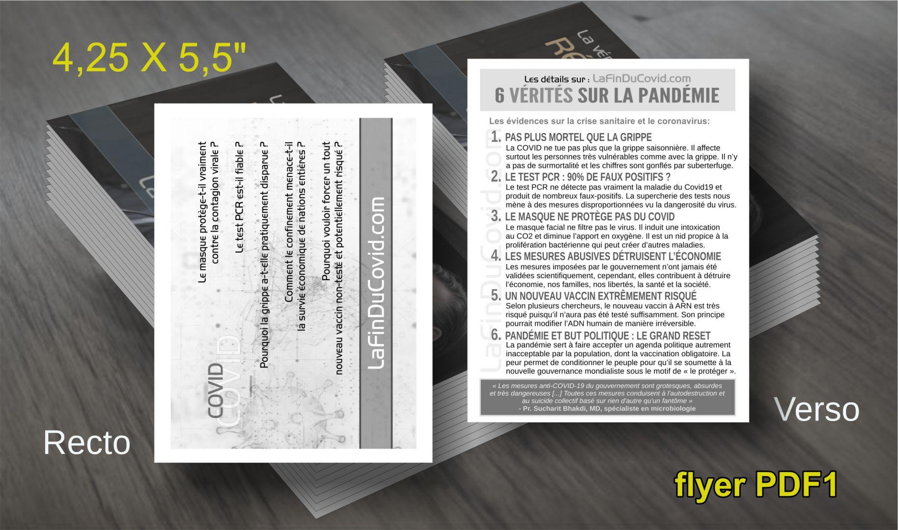 Flyer (à imprimer) 6 vérités sur la pandémie - PDF
