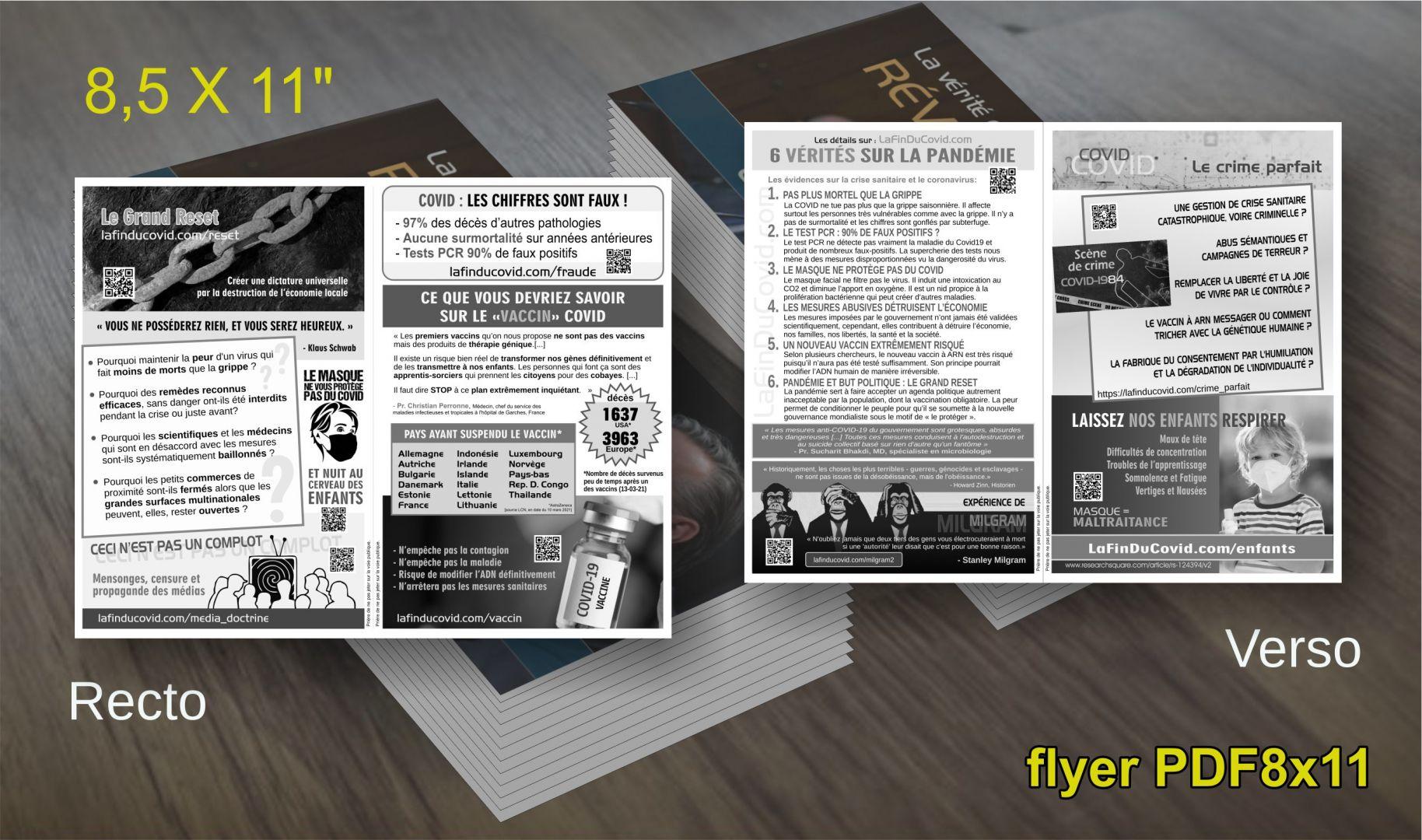 Flyer (à imprimer) 6 vérités pandémie - Grand Reset - Vaccin ARN - PDF