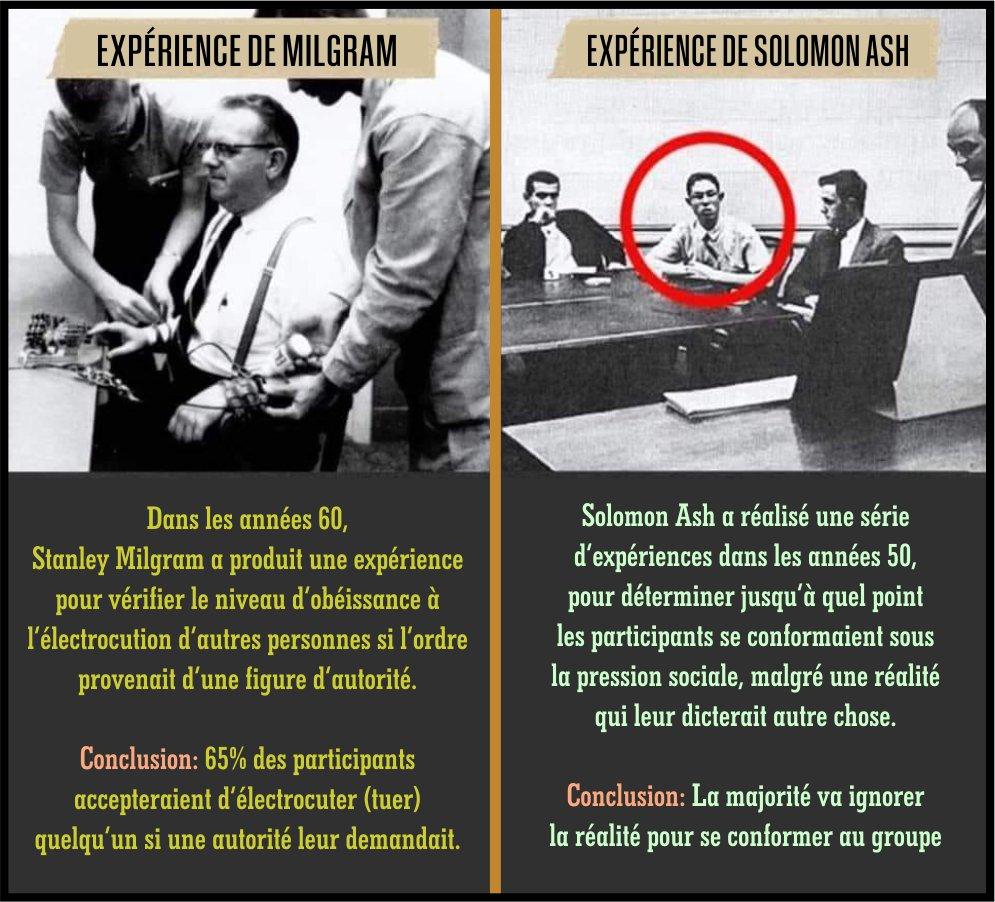 Propension de l'individu à l'obéissance et à la conformité (Expériences de Milgram et de Solomon Ash)
